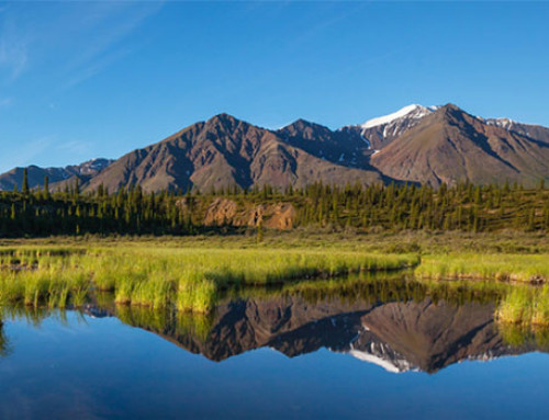 2021 Alaska Cruise Season