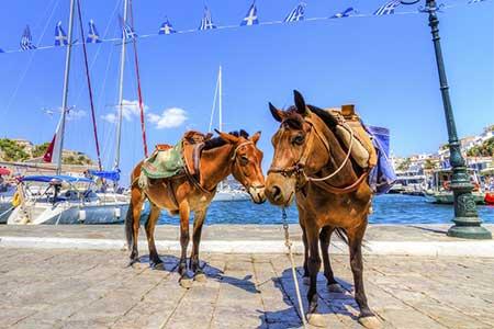 Escorted Greek Isles - Hydra